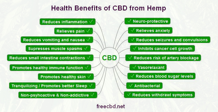 Image result for image of health benefits of hemp extract